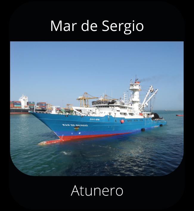 Mar de Sergio - Atunero