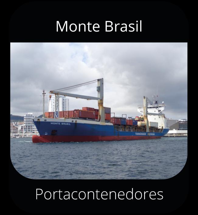 Monte Brasil - Portacontenedores
