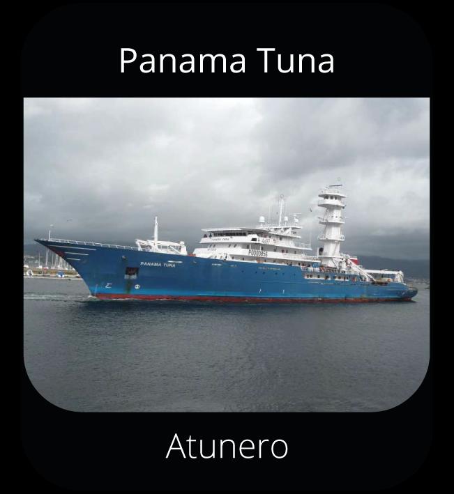 Panama Tuna - Atunero