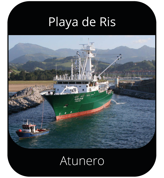 Playa de Ris - Atunero