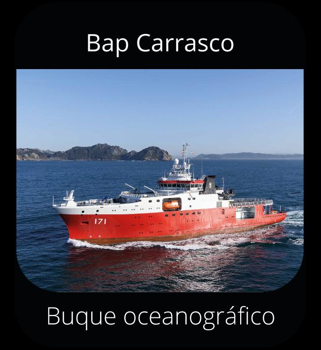 Bap Carrasco - Buque oceanográfico