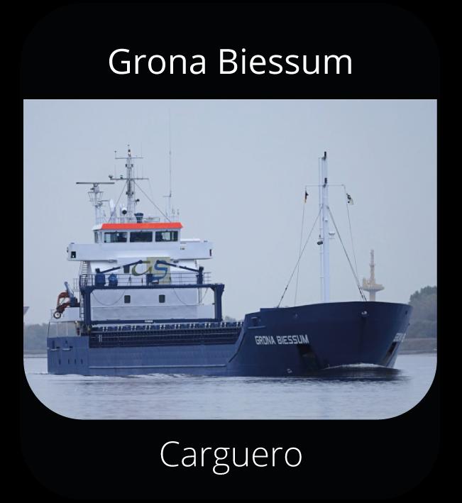 Grona Biessum - Carguero